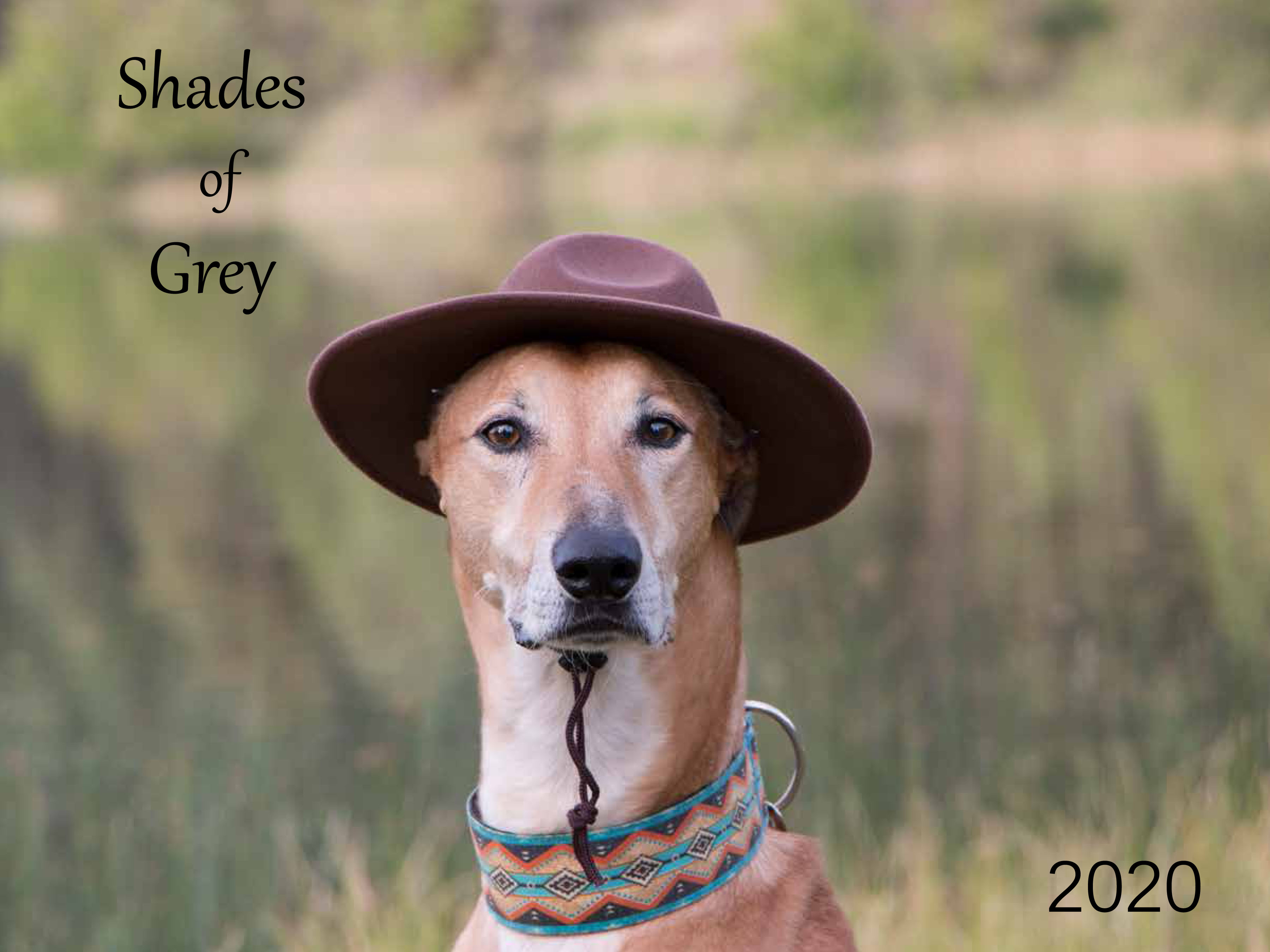 Shades of Grey 2020 front cover picture